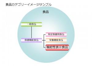 機能性表示食品位置づけイメージサンプル